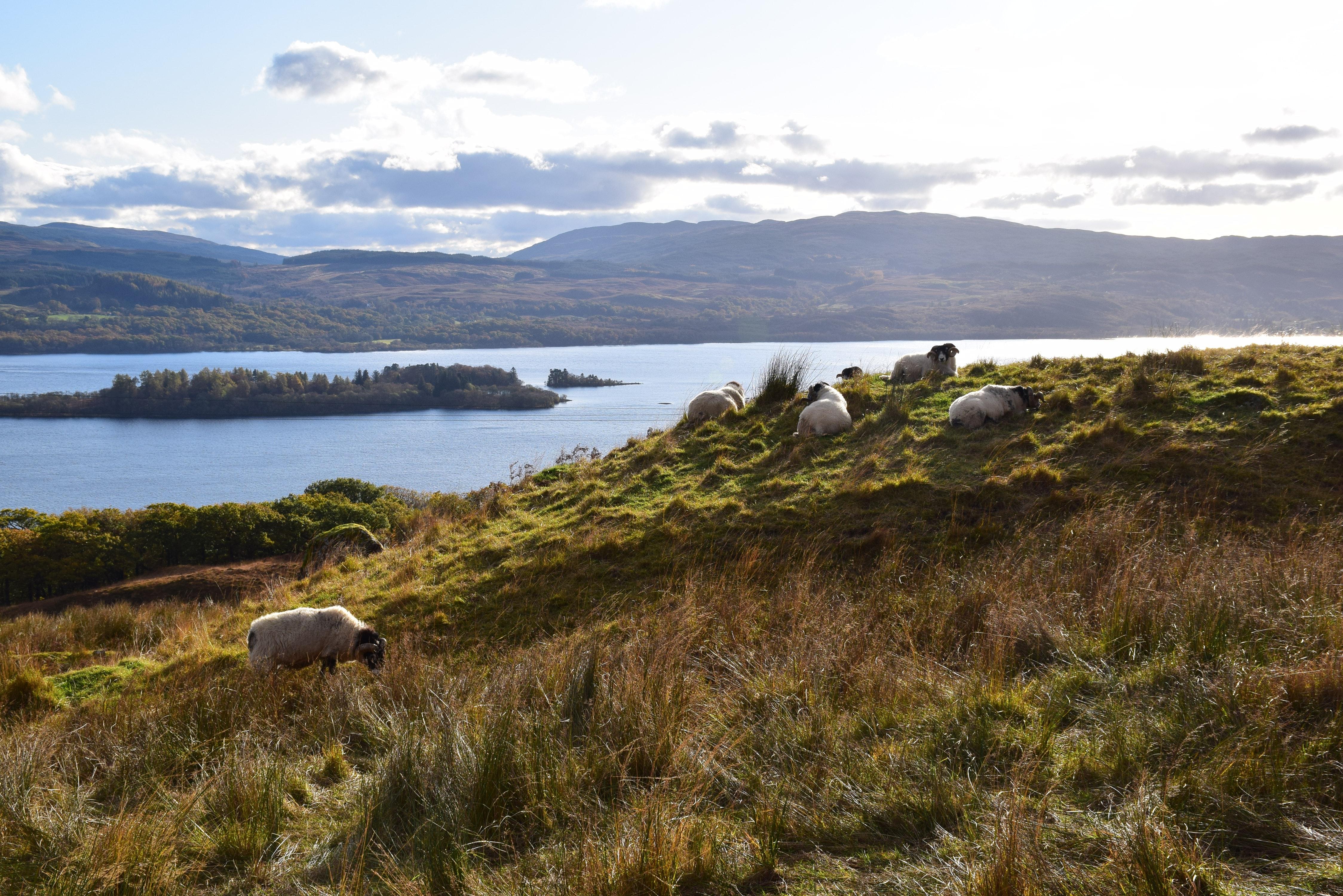 Loch Awe in Scotland